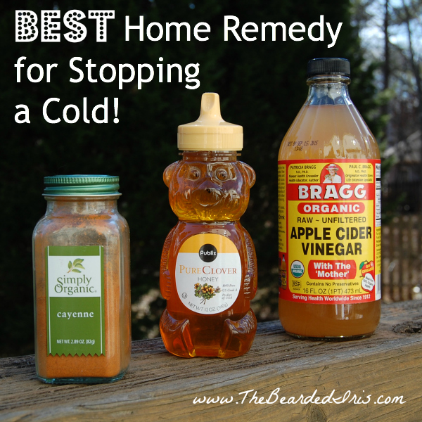 Best home remedy for stopping a cold by The Bearded Iris