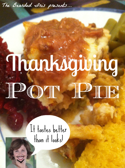 thanksgiving pot pie by the bearded iris