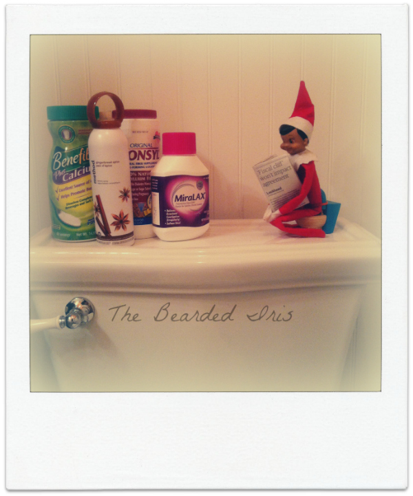 Elf on the Shelf Dobbie on the crapper by The Bearded Iris #InappropriateElf