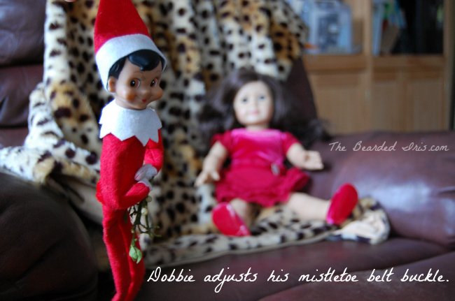 Dobbie adjusts his mistletoe belt buckle by The Bearded Iris