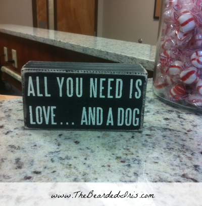 All you need is love and a dog via The Bearded Iris