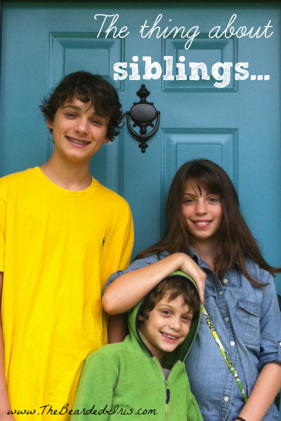 The thing about siblings by The Bearded Iris